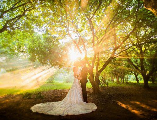 Chương trình khuyến mãi chụp ảnh cưới tháng 10